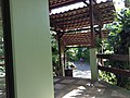 Limón, Jiménez, Costa Rica - panoramio (1).jpg