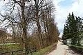 Lindenbaumreihe in Gars 2015-04 ehm NDM-HO-054.jpg