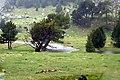 Llanos del Hospital - panoramio - jnerin (1).jpg