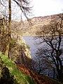 Llyn Gwynant from Penmaen-brith woods - geograph.org.uk - 150024.jpg
