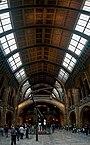 London - Cromwell Road - Natural History Museum 1881 by Alfred Waterhouse - Central Hall - ICE Photocompilation Viewing South & Up.jpg