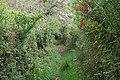 Looe, near Hendersick - geograph.org.uk - 1509482.jpg