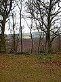 Looking out from Kinver Edge - geograph.org.uk - 1702036.jpg