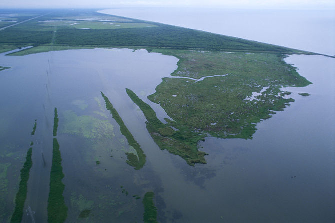 Aerial view of Louisiana wetlands
