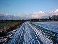 Loxstedt - Feldweg im Winter 2004 b.jpg