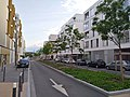Lyon 8e - Rue Capitaine Elisabeth Boselli (mai 2019).jpg