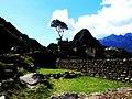 Machu Picchu (Peru) (14907213437).jpg