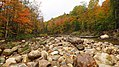 Mad River, Nr Hwy 49, Waterville Valley (493936) (11748123313).jpg