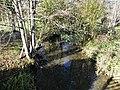 Manaurie ruisseau de Manaurie D31 bourg amont.jpg