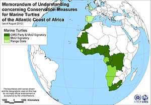 Memorandum of Understanding concerning Conservation Measures for Marine Turtles of the Atlantic Coast of Africa - Map of Signatories to the Marine Turtles of the Atlantic Coast of Africa MoU, as of 15 August 2012