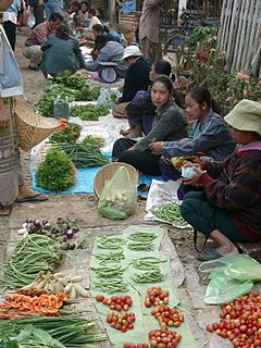 Demographics of Laos