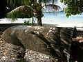 Marshall Islands PICT1114 (4777210742).jpg