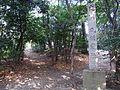 Marune-Toride 110128.jpg