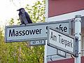 MassowerStr AmTierpark 1055-935-(120).jpg