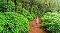 Matheran in August2012 - panoramio (62).jpg