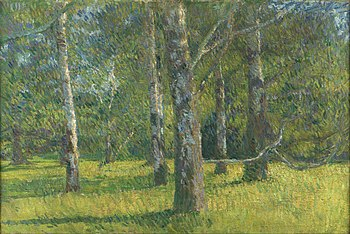 Matija Jama - Birches in Laxenburg