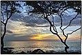 Maui Sunset (48572432).jpeg