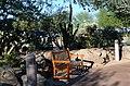 Mayo Clinic Nature Trail in Phoenix AZ - panoramio (15).jpg