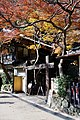 Meiji no Mori Minoh Quasi-National Park Minoh Osaka pref Japan09n.jpg