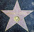 Merian C. Cooper Star HWF.JPG