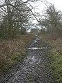 Merritown, Stour Valley Way - geograph.org.uk - 1154111.jpg