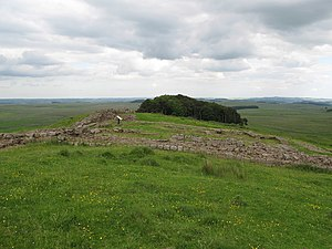 Milecastle 35 - Consolidated remains of Milecastle 35