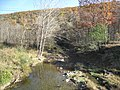 Mill Creek Romney WV 2008 10 30 07.jpg