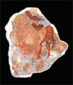 Minoan fresko avaris 2.png