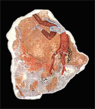 Avaris - Image: Minoan fresko avaris 2