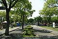 Mitachi Kotu Park 21.jpg