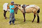 Mongolski chłopiec i konie na stepie podczas lokalnego festiwalu Naadam (03).jpg