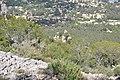 Mont - Faron, Toulon, Provence-Alpes-Côte d'Azur, France - panoramio (5).jpg
