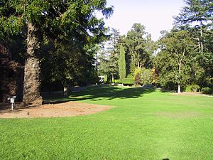Montalvo Arts Center - The front lawn of the mansion looking towards the statue-adorned garden.  On the left, one of the mansion's artistic displays can be seen, a hut made from twisted tree branches.