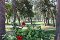 Montazah Garden 00 (19).JPG