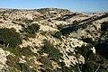 Montsant - panoramio.jpg