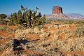 Monument Valley Morning Snow2 MC.jpg