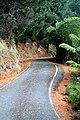 Moonridge Rd - panoramio.jpg