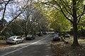 Mount Wilson NSW 2786, Australia - panoramio (37).jpg