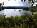 Mußbacher Baggerweiher - panoramio.jpg