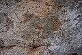 Murewa rock paintings (17).jpg