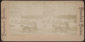 Museum of Art, N.Y, from Robert N. Dennis collection of stereoscopic views.png