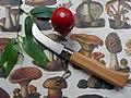 Mushroom knife with wooden handle.jpg