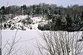 Muskoka Woods, Rosseau, Ontario in Winter - panoramio - A J Butler (7).jpg