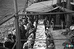 Na ladji je bilo dobro poskrbljeno za prehrano 540 potnikov. Na jedilniku so se med drugim znašli tudi trije voli 1910.jpg