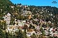 Nainital City,.jpg