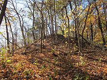Photos maxi mound