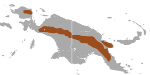 Narrow-striped Marsupial Shrew area.png