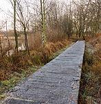 Nationaal Park Weerribben-Wieden. Vlonderbrug door moeras 01.jpg