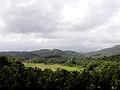 Nature view.jpg