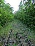 Nebenbahn Finnentrop-Wenholthausen (5778059800).jpg